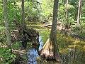 Prairie Creek - panoramio (2).jpg