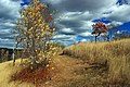Prairie Grass Trail (10) (15452257157).jpg