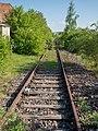 Prichsenstadt Bahnlinie 4290623.jpg