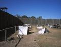 Prisoner lean-tos at Andersonville Prison, Andersonville, Georgia LCCN2011630003.tif