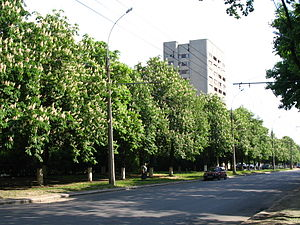 2015 Kharkiv bombing - Marshal Zhukov Avenue in Kharkiv, where the bombing took place