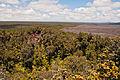 Pu'u Huluhulu landscape.jpg