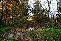 Public footpath, Church Thorns - geograph.org.uk - 604369.jpg