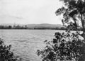 Queensland State Archives 1110 Coomera River January 1929.png