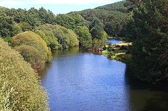 Río Duero en la provincia de Soria.jpg