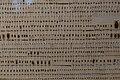 RAMM - Philip Le Hardy de la Garde coleoptera collection 01.jpg