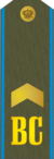 RFAF - Senior Sergeant - Every day green.png