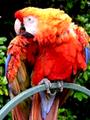 RGB 9bits palette sample image.png