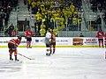 RPI vs. Michigan ice hockey 2014 29.jpg