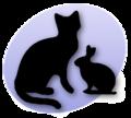 Rabbit&cat3.png