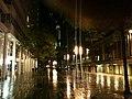 Rainy streets in Den Haag (Netherlands 2010) (6298665868).jpg
