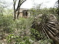 Rajon ki Baoli and fallen dome cap (3702861979).jpg