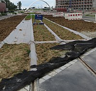 Rasengleis-Bau 20160630-Straatsburg.jpg