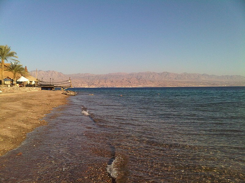 File:Red sea stony beach taba egypt.jpg