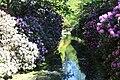 Rhododendronpark Bremen 20090513 273.JPG