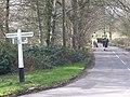 Riding at Slaugham Common - geograph.org.uk - 709874.jpg