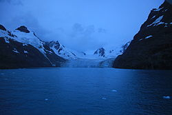 Risting Glacier flows into Drygalski Fjord, South Georgia.jpg