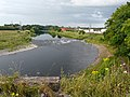 River Eden, upstream from Waverley Viaduct - geograph.org.uk - 1411837.jpg