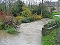 River Glyme in flood Cleveley Oxfordshire - geograph.org.uk - 286820.jpg