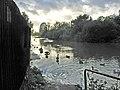 River Soar, Belgrave, Leicester - geograph.org.uk - 70260.jpg