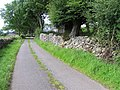 Road at Ballyshannon - geograph.org.uk - 504810.jpg