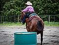 Rodeo in Panama 30.jpg