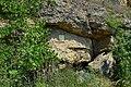 Rohrendorf bei Krems - Naturdenkmal KR-070 - Steinwandlschluf.jpg