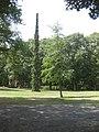 Rosengarten Forst, Ginkgo und Serbische Fichte im Wehrinselpark, Sommer, 02.jpg
