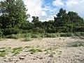 Rosenhagen Strand - geo.hlipp.de - 13104.jpg