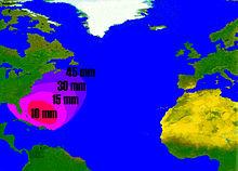 Anguilla anguilla - Wikipedia