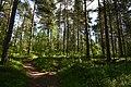 Rovaniemi, Finland (12) (36639292796).jpg