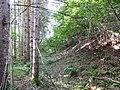 Ruine Dietrichstein Graben 01.jpg