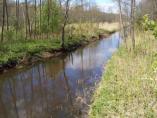 Narewka (river) river in Belarus
