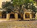 Sân Phan mùa lá rụng.jpg