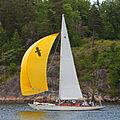Sailboat 6749.jpg