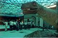 Saroj Ghose and other Dignitaries with Tyrannosaurus - Dinosaurs Alive Exhibition - Science City - Calcutta 1995-06-15 119.JPG