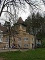 Savadisla Castelul (3).JPG