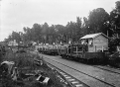 Scene at Erua railway station with goods carriages and dwellings ATLIB 267646.png