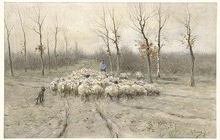 Troupeau de moutons dans la lande à Laren