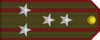 Senior Colonel rank insignia (North Korean secret police).png