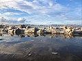 Seria Coast 2020 (2).jpg