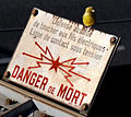 Serin on warning sign.jpg