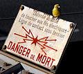 Serin on warning sign.jpg