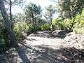 Serra dels Agudells P1220873.jpg