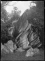 Shell Rock (limestone rock formation) at Ruatangata, 1923 ATLIB 300290.png