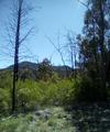 Sideing Springs Mount, Garaghnan Parish Gowen County (Warrembungles ) NSW.png