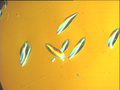 Silicon dislocation orientation 100 mag 500x.png
