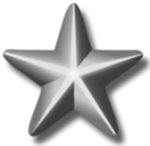 Flag of the United States Navy - Image: Silver service star 3d