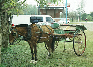 Sulky - Sulky and horse in Simoca, the 'sulky capital' of Argentina