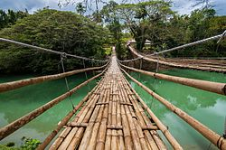 Sipatan Twin Hanging Bridge.jpg